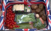 Thanet-Earth-Mixed-Veg-boxes